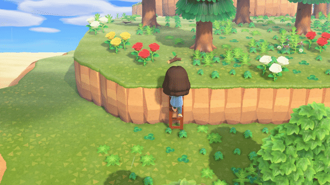 animal-crossing-new-horizons-echelle-atteindre-endroits-inaccessibles