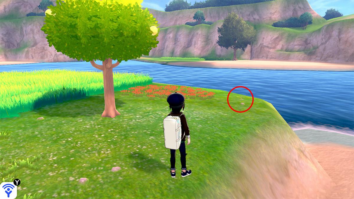 pokemon Ile solitaire de l'Armure emplacement Taupiqueur Lagune Circulaire