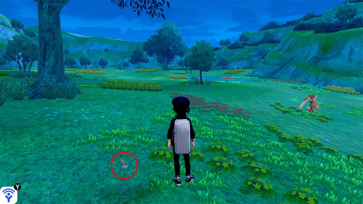 pokemon Ile solitaire de l'Armure emplacement Taupiqueur Lande Boldair