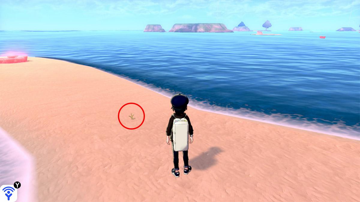 pokemon Ile solitaire de l'Armure emplacement Taupiqueur Mer Align'Îlots
