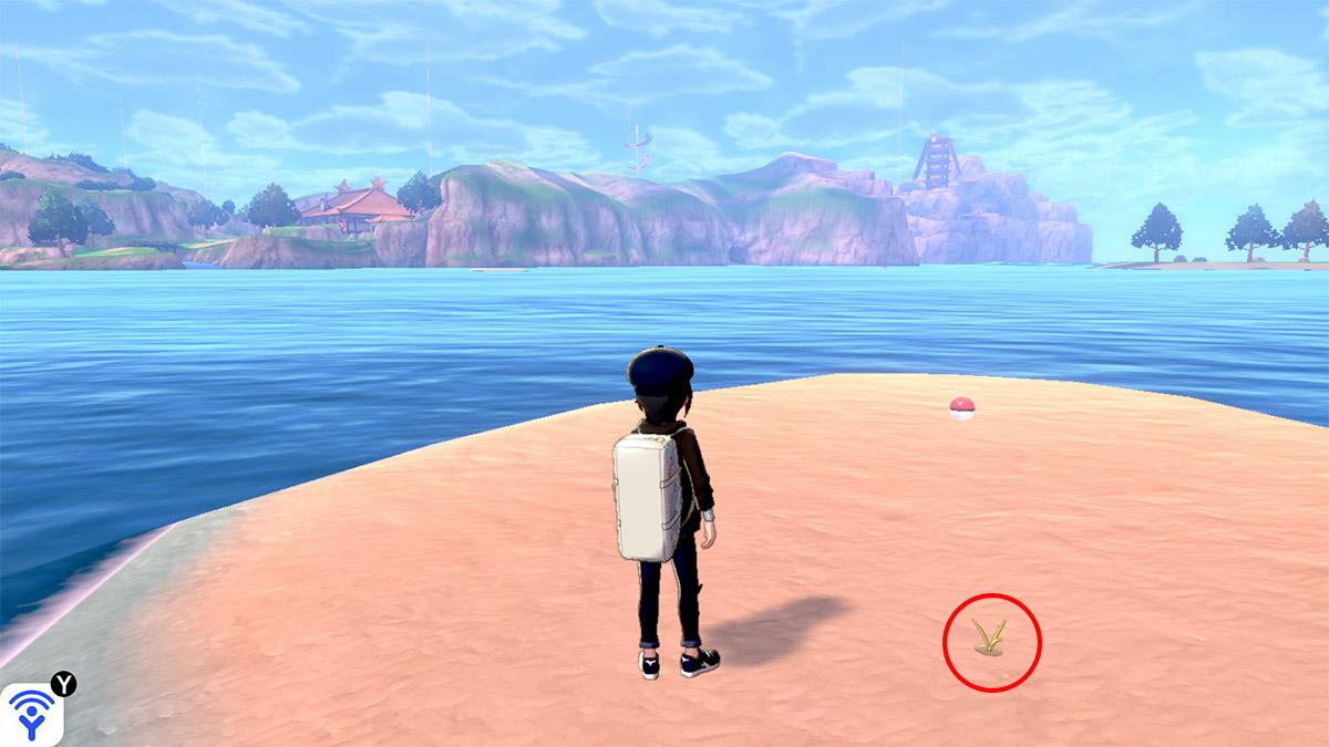 pokemon Ile solitaire de l'Armure emplacement Taupiqueur Mer Eau-Hisse