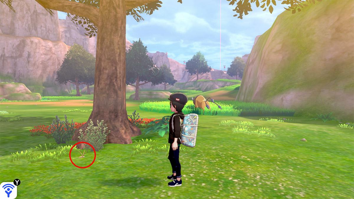 pokemon Ile solitaire de l'Armure emplacement Taupiqueur Plaine des Efforts