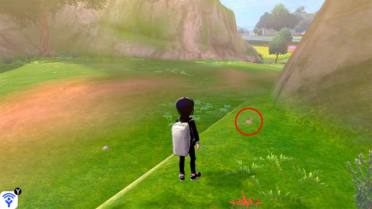pokemon Ile solitaire de l'Armure emplacement Taupiqueur Plaine Salutation