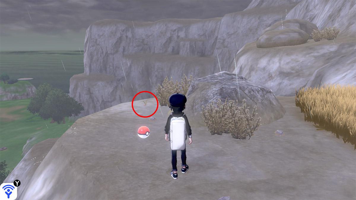 pokemon Ile solitaire de l'Armure emplacement Taupiqueur Route de l'Épréuve