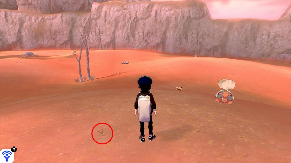 pokemon Ile solitaire de l'Armure emplacement Taupiqueur Sables de Kudsac