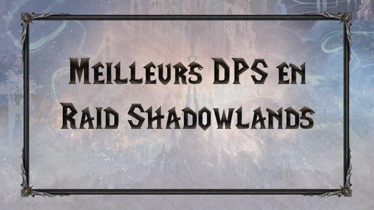 wow-shadowlands-SL-RAID-chateau-nathria-DPS-distance-cac-meilleurs-tiers-list-best-classe-specialisation-vignette