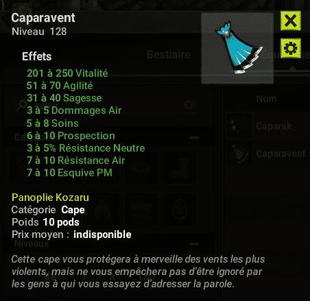 panoplie-kozaru-2