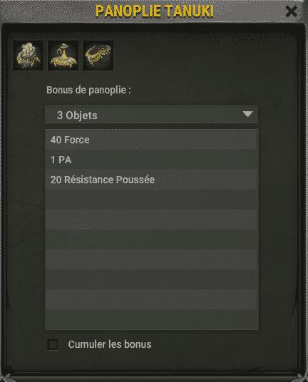 panoplie-tanuki-4