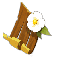 bouclier-fleuri